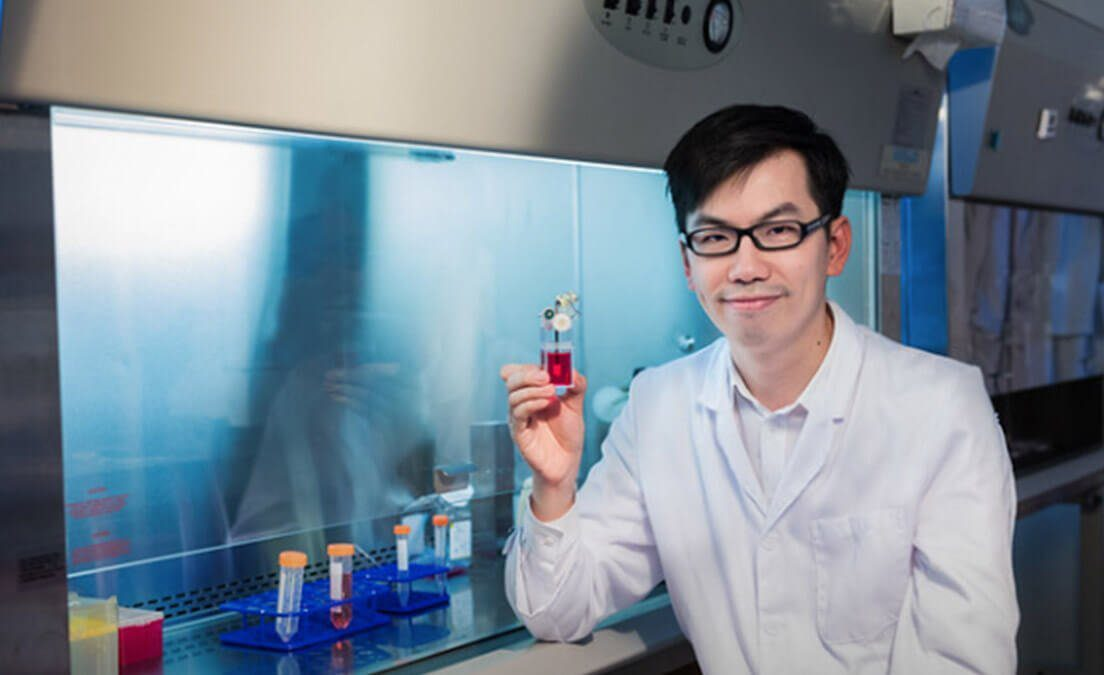 Novoheart and Astra Zeneca develop heart in a jar