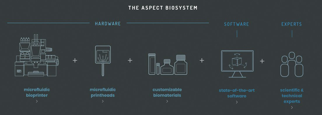 Longevity Technology Aspect Biosystems 3d Bioprinting